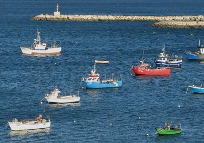 Fischereiwirtschaft Definition Fischerei am beispiel Großbritanniens