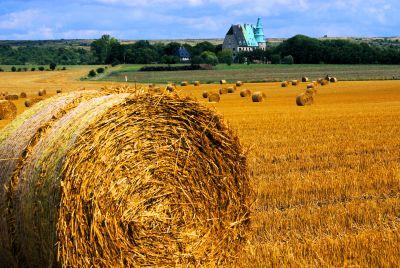Landwirtschaften im ländlichen Raum