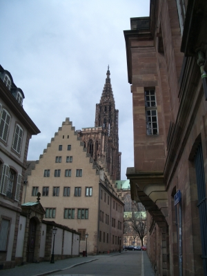 Münster Straßburg: die Cathédrale Notre-Dame
