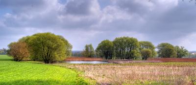 Ziele der Revitalisierungsvorhaben von Uferzonen