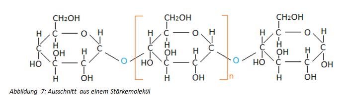 Polysaccharide und Stärkemolekül